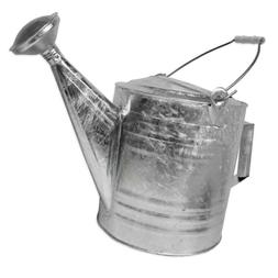 Galvanized Steel Hot Dipped Watering Can - Size: 10 Quart