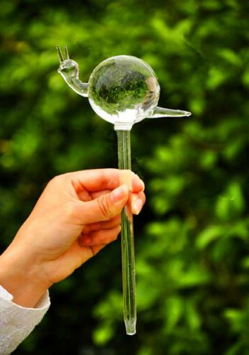 Automatic Self Plant Watering Bulb Globe Device Indoor House